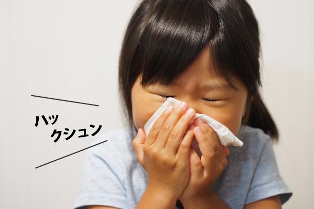 子供のアレルギーがひどくなった。害獣の多くは病原体やダニやノミを持っており、アレルギーやぜんそくなどの原因になります。しっかりとした除去・除菌が大切なのです!